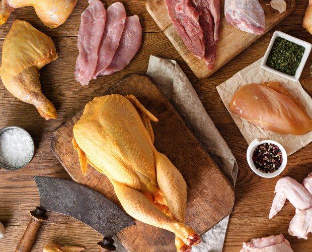 Aves. Pollo y otras aves