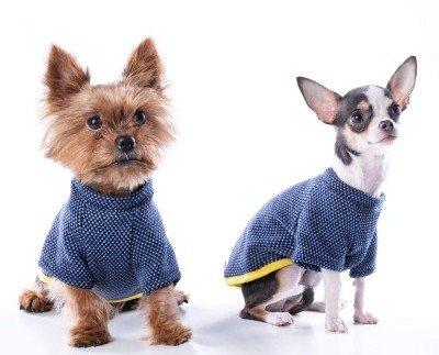 Camiseta para perro nun blues. Jersey para perro mediano o pequeño