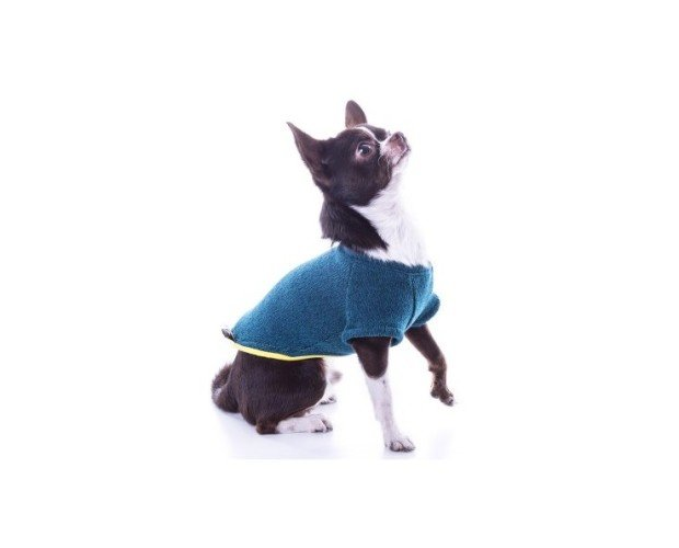 Jersey para perro. Nun freeze azul