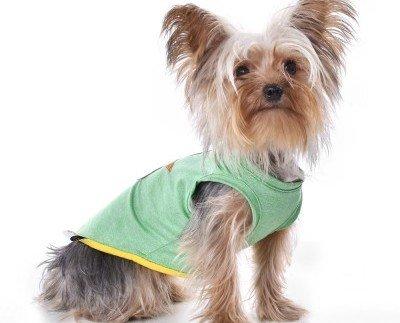 Camiseta Grass. Camiseta fina para perro moderno y urbano.