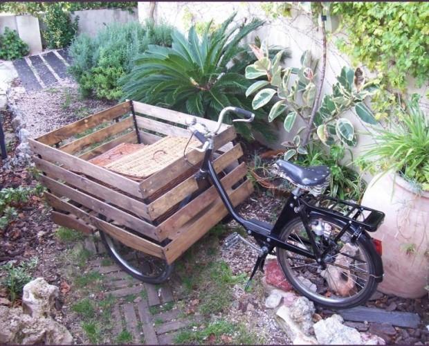 Triciclos. Alquiler de tricilos