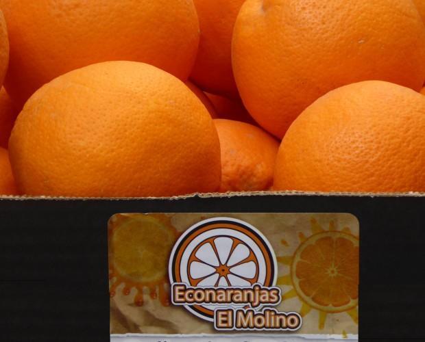Naranjas ecológicas. Naranjas ecológicas certificadas