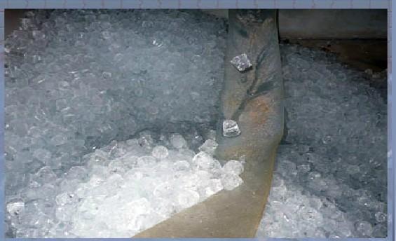 Hielo en cubitos. Mayorista de cubitos de hielo de 40 gramos
