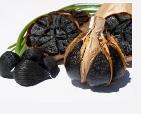 Ajo. 1 cabeza de ajo negro de alta calidad