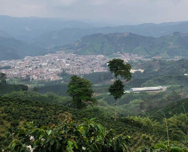 Origen. La tierra donde nace nuestro café