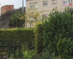 Diseño de Jardines y Paisajismo.Gran experiencia en el sector
