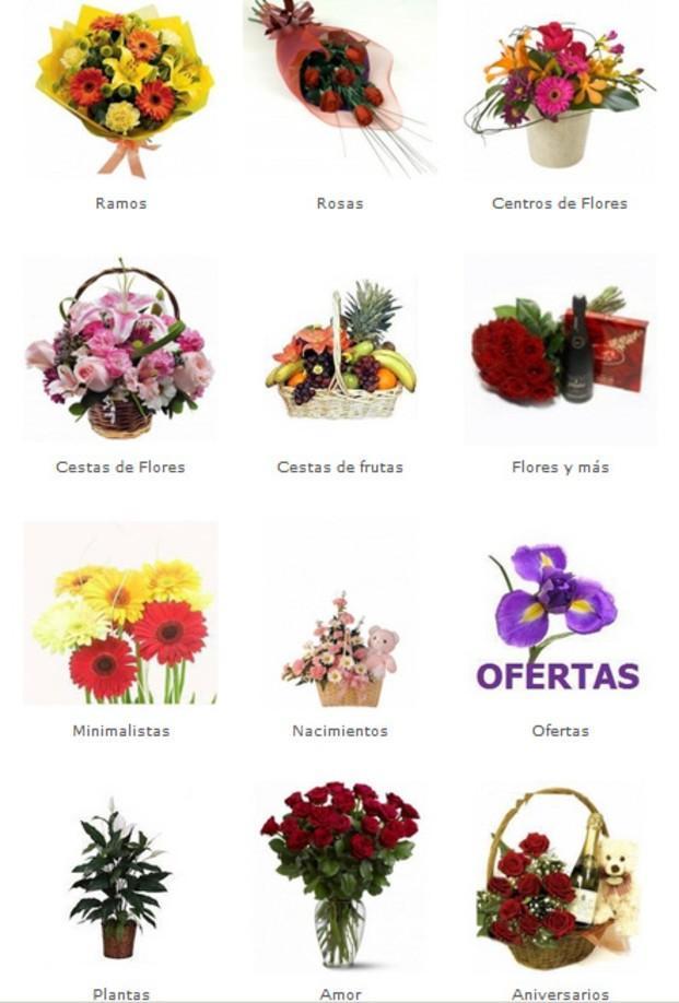 Flores. Ramos, centros, decoraciones florales, bodas, nacimientos