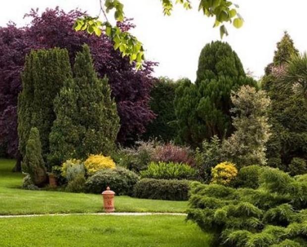 paisajismo y jardinería. Somos expertos en el cuidado de jardines