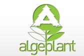 Algeplant
