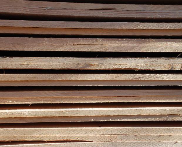 Madera. Materia prima de excelente calidad