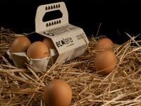 Huevos Ecotera