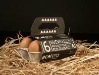 Huevos ecológicos