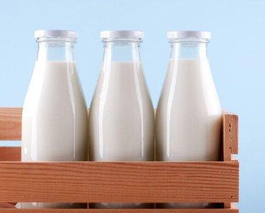 Leche. Variedad de productos lácteos.