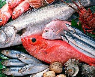 Pescados y Mariscos. Pescado y marisco