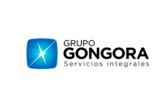 Grupo Góngora