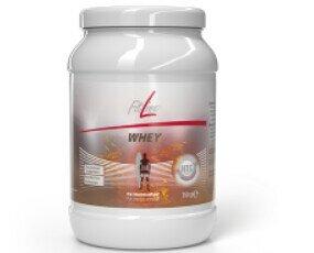 FitLine Whey. Concentrado de proteína de suero en polvo para la preparación de bebidas proteicas