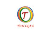 Trilogía Consultores