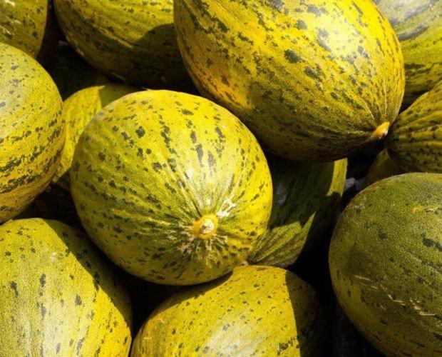 Melones.Tenemos lo que busca