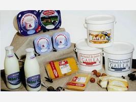 Proveedores Productos lácteos