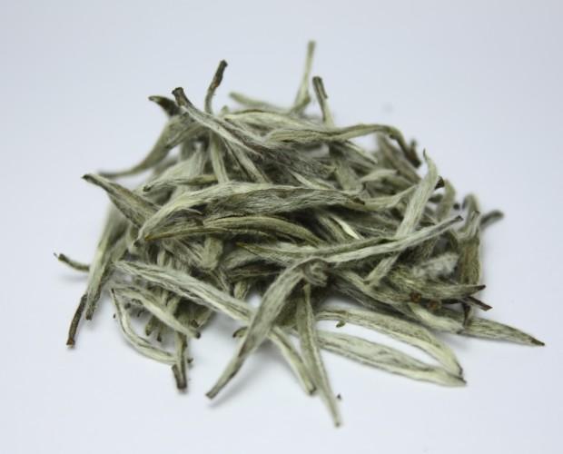 Té Blanco. Agujas de plata, el té blanco más puro del mercado