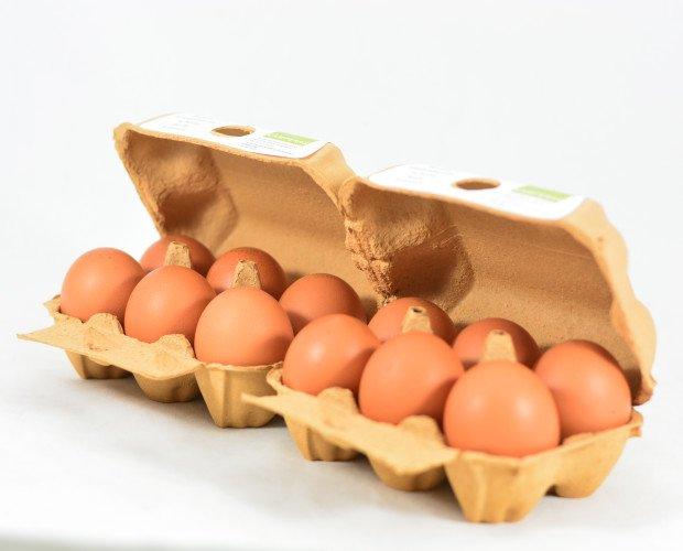Huevos Nogales. Huevos Camperos Nogales