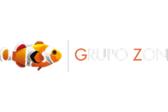 Grupo Zon