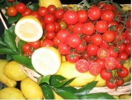 Vegetales. Tomate, cebolla, acelga,etc.