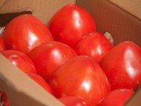 Caja de tomate