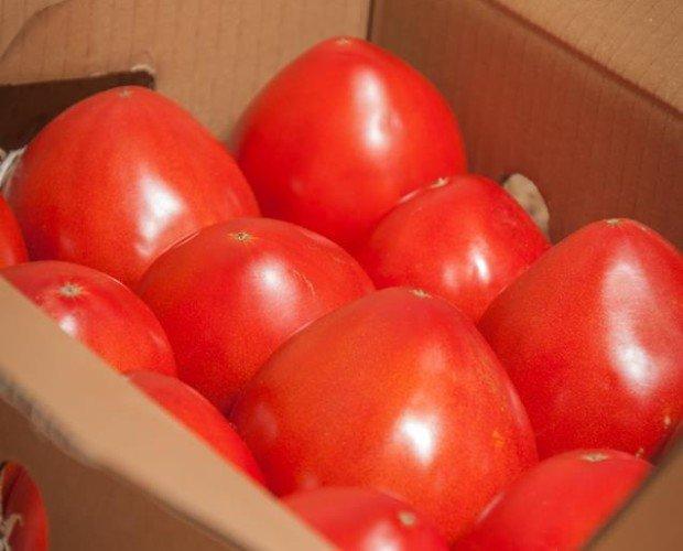 Caja de tomate. Destacan por su jugosidad