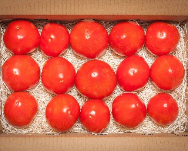 Tomates OX. Tomate de textura suave