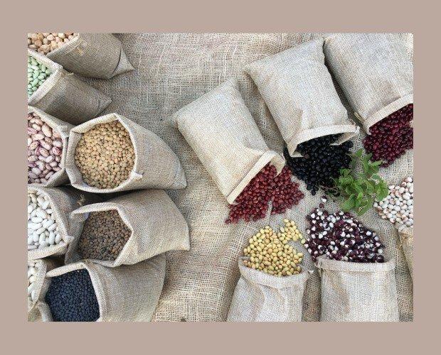 Semillas y Legumbres. Granos de la Rioja