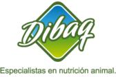 Grupo Dibaq