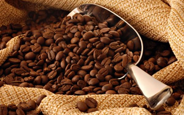 Café en grano. Mezcla y descafeinado en bolsas de 1 kg