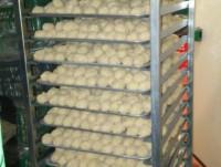 Proveedores Croquetas de jamón