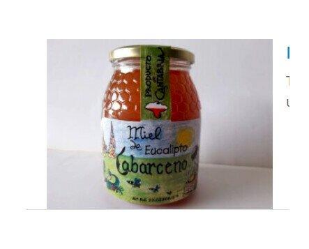 Miel de Eucalipto. Elaborada por una empresa familiar de Obregón
