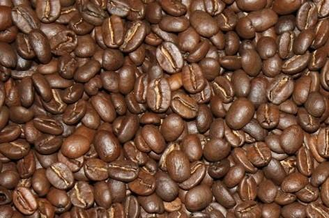 Proveedores de Café. Café Tostado