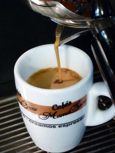 Im genes de caf s mama same - Infudea alta gama ...