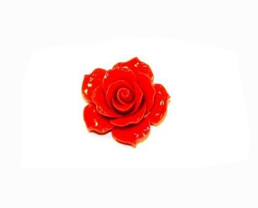 Rosa Naranja. Ideales para regalo y decoración