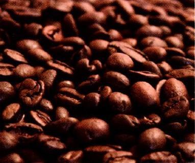Proveedores Café. Materias primas excelentes. Sabor inigualable.