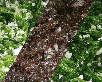 MIx de algas. En salazón