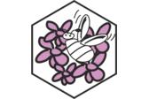 Escuela Perfumistas Beeflowers