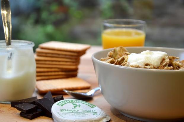 Yogur.Ideal para el desayuno