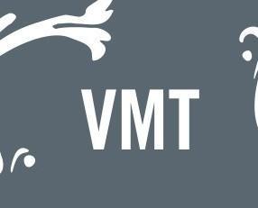 VMT. Tratamiento completo,eficaz y testado para el crecimiento del pelo