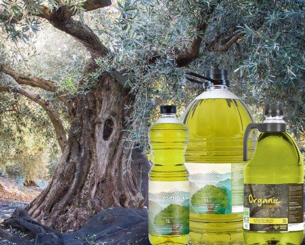 Nuestro aceite. Nuestros aceites en diferentes formatos