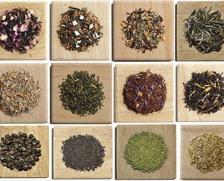 té, infusión. té, infusión
