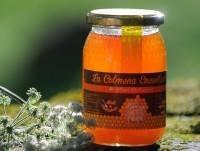 Proveedores Miel de mil flores