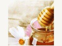 Proveedores Miel