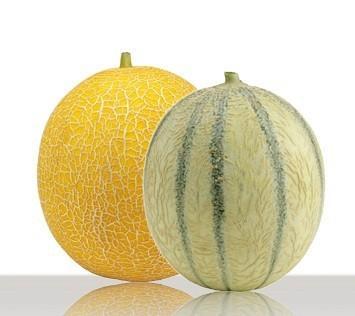 Frutas. Melón