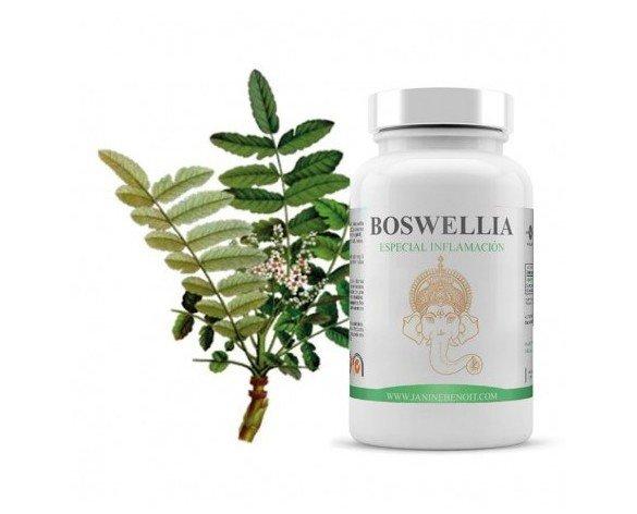 Boswellia. Complemento alimenticio 100% natural