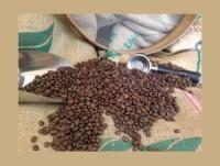 Nuestro café de calidad